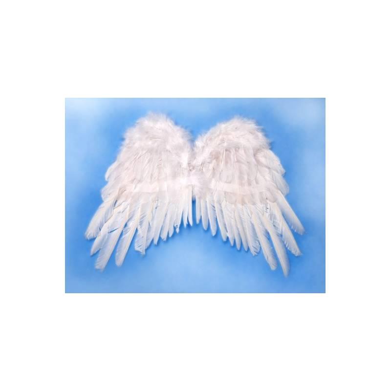 Skrzydła anioła 53x37 cm
