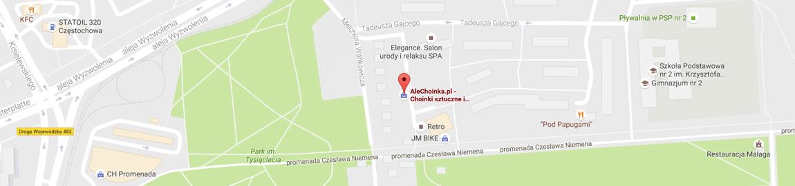 Jak dojechać do sklepu Alechoinka w Częstochowie?