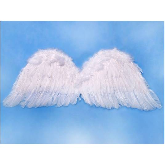 Skrzydła anioła 75x30 cm